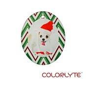 YZ718S ~ Color Lyte Clear Satin Oval Glass Ornament -Portrait