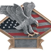 "DPS14   6"" X 4-1/2"" Diamond Plate Resin Large Eagle Trophy"